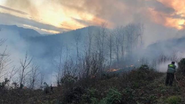 Karadeniz'de Büyük Yangın! 58 Bölge…